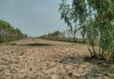 Land in Phen, Udon Thani - DDproperty.com