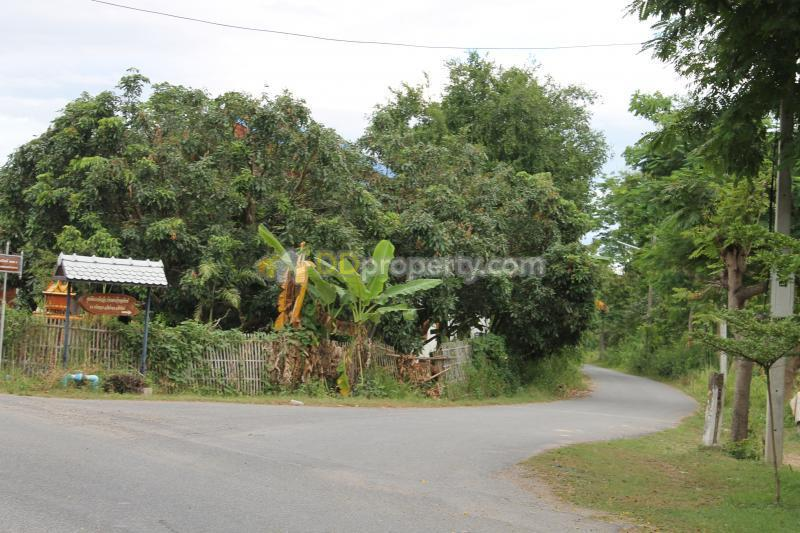 chiang mai land for sale 100 sq filled with electricity