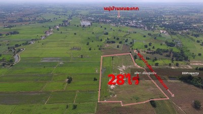 For Sale - Land For Sale 28 rai 3, Ban Nong Kok, 14 km from Sikhio district, suitable for farming