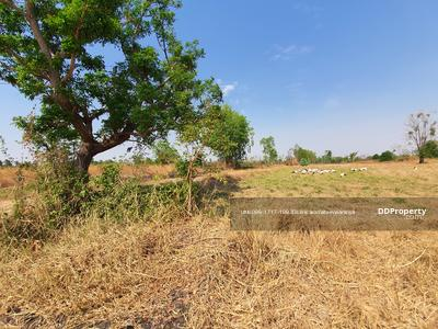 For Sale - Vacant land for Dry Port Project, approximately 47 rai of land, with title deeds, near Mittraphap Road, Sung Noen District,  Korat, Nakhon Ratchasima, the cheapest in this area.