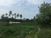 ขาย - ขายที่ดินเปล่า 12 ไร่ ซอยชะอำ 53 ถนนเพชรเกษม ใกล้ทะเล หัวหิน สนามบินหัวหิน