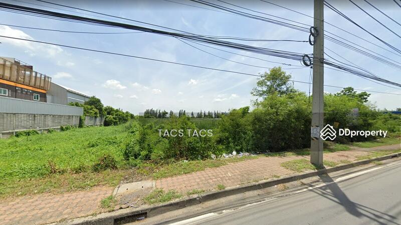 ขายที่ดินเปล่า ถนนคลองหลวง ใกล้วัดพระธรรมกาย #94957431