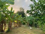 ขายที่ดินสวยติดน้ำ และบ้านสวน  21 ไร่  ต. วังด้ง อ. เมือง จ. กาญจนบุรี