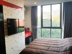 Vinn Sukhumvit 46 / 1 Bedroom (FOR SALE&RENT), วินน์ สุขุมวิท 46 / 1 ห้องนอน (ขาย/ให้เช่า) H171   06082