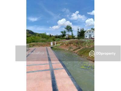 ขาย - ขายที่ดินแปลงสวยๆปรับถมทำถนนแล้ว พร้อมสร้างบ้านได้เลยมีถนนเชื่อมต่อถึงอ่างเก็บน้ำ