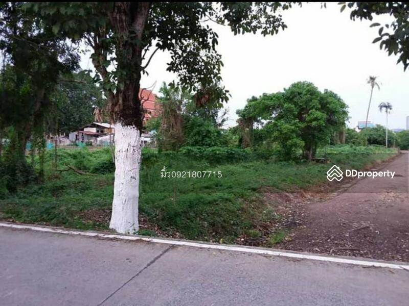 ที่ดินที่ ปากเกร็ด  ต.บางตะไนย์ อ .ปากเกร็ด จ.นนทบุรี #77362499
