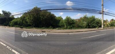 ให้เช่า - ให้เช่าที่ดิน 7. 53 ไร่ บนถนนบรมราชชนนี จังหวัดนครปฐม