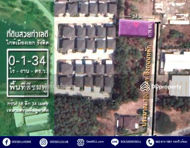 ขาย - ขายทีดินแปลงสวย ถูกที่สุด ในเมืองเอก รังสิต