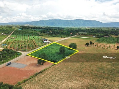 For Sale - P Land for sale in Khao Yai, the best location in this area 1-1-28 rai, Pong Ta Long Subdistrict, Pa