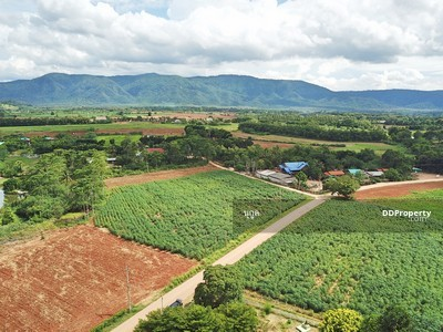 For Sale - Land for sale in Khao Yai, see the most beautiful mountain range, 4 rai, Pong Ta Long Subdistrict, P