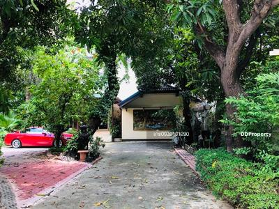 For Rent - House for rent at Sukhumvit 31, 5 bedrooms, 5 bathrooms, area 500 sq m. Area 218 square wa 10 car parking spaces Rent 250, 000 baht, contact 0932181290 Khun Kae