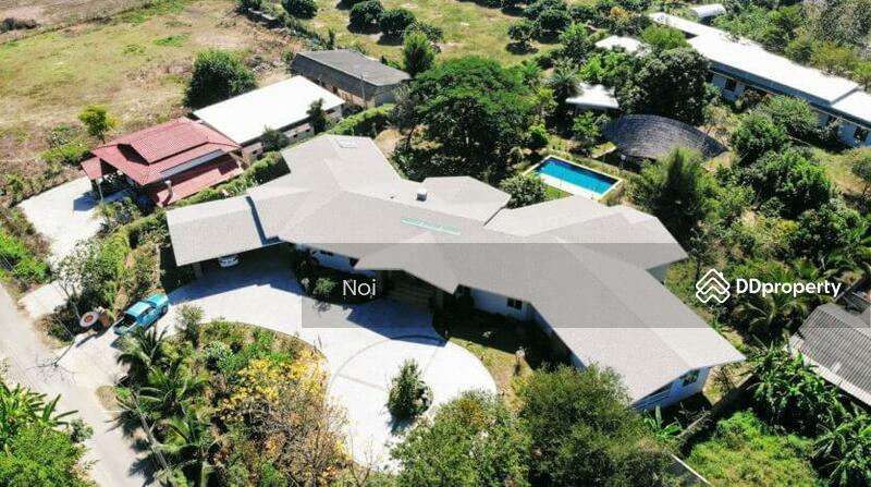 Spacious 6 Bedroom Villa in San Klang for Sale & Rent #80289565