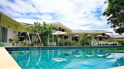 ให้เช่า - Spacious 6 Bedroom Villa in San Klang for Sale & Rent