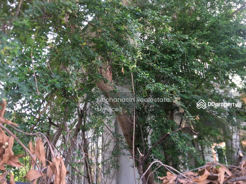 ด่วน! บ้านเดี่ยว ลัลลี่วิลล์ เทพารักษ์ (มังกร) #81620965