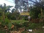 A01150705 For sale Vancant land on Koh phagnan roadside Baan tai road-haad rin