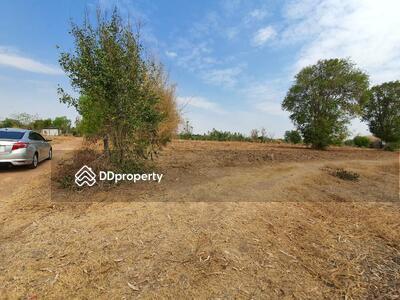 ขาย - ขายที่ดินเปล่า 47 ไร่ อ. สูงเนิน โคราช โฉนดถูกกฎหมาย ฟรีค่าโอน