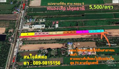 For Sale - ขายที่ดิน 200 ตารางวา คลอง 9 ต. บึงบา อ. หนองเสือ จ. ปทุมธานี