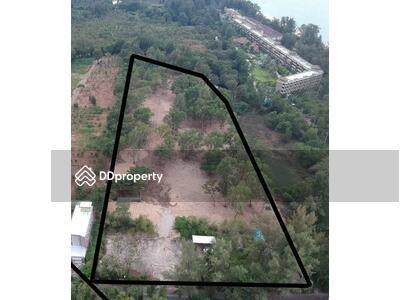 ให้เช่า - ให้เช่า / ขาย ที่ดิน ย่าน Mai Khao MSP-30402