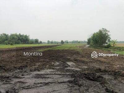 ขาย - ขาย ที่ดิน ที่ดินเปล่า บ้านนา นครนายก ราคาพิเศษ  100 ตร. ว บรรยากาศบ้านสวนเกษตร
