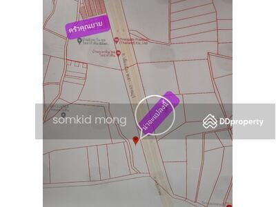 For Sale - ขายถูก ขายที่ดิน 2 ไร่  ติดถนนเลี่ยงเมือง ชะอำ-ปราณบุรี สวย(งดนายหน้า)