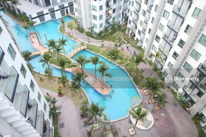 Arcadia beach resort pattaya #85853961