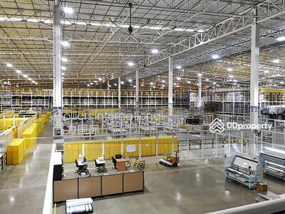ขาย - โกดังศูนย์กระจายสินค้า 18, 000 ตรม บนถนน 345 ปทุมธานี 仓库和工厂出售 18000 平方米