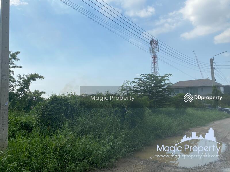 100 sq.wah. Corner Plot Land for Sale in Ban Mai, Ban Mai Pak Kret, Nonthaburi. #86207907
