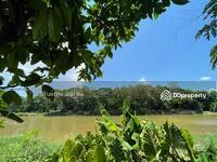 ขาย - บ้านสวนติดแม่น้ำปิง เป็นอีกหนึ่งความฝันของหลายๆคนที่อยากมีบ้าน ที่ดิน