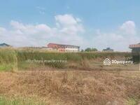 ขาย - 6407-004 ขาย ที่ดิน นนทบุรี แปลงสวย ติดถนนใหญ่ ย่านบางบัวทอง-ไทรน้อย 2