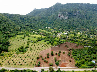 For Sale - Land for sale in Khao Yai, Phayayen Subdistrict, Pak Chong District, 20 rai, amazing view.
