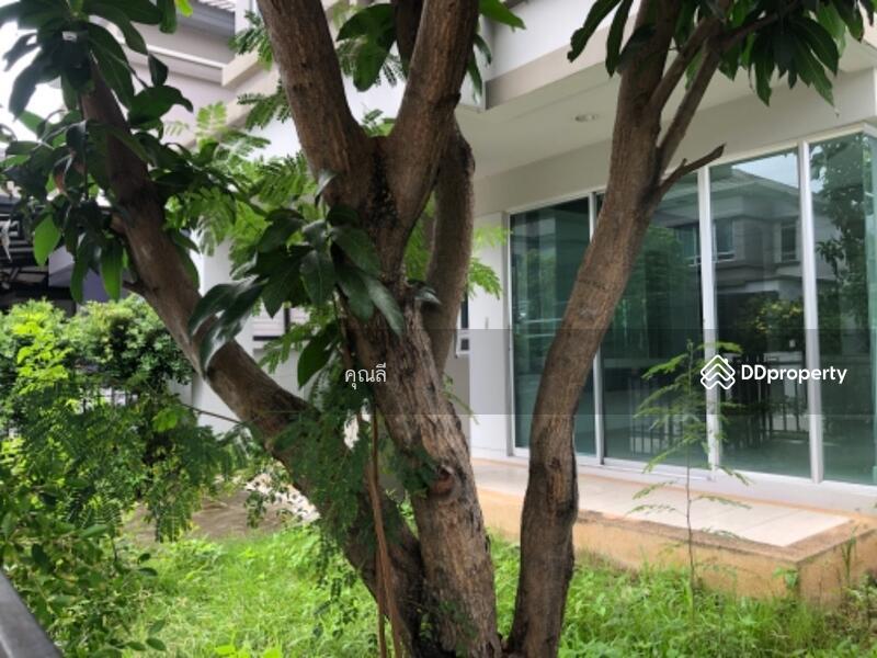 Life Bangkok Boulevard Wongwaen-Onnut 2 #91478585